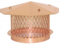 2-copper_pottoppers_oct400px1.jpg